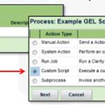 CA PPM (Clarity), gel scripting