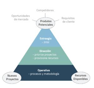 NPD CA PPM innovacion estrategia